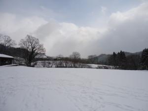 雪景色~(*´∀`*)ノ。+゜*。